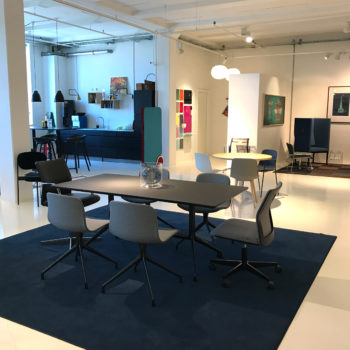 BOTIUM_showroom_2_Valby